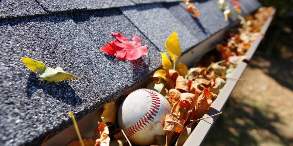 Rain gutter full of autumn leaves with a baseball